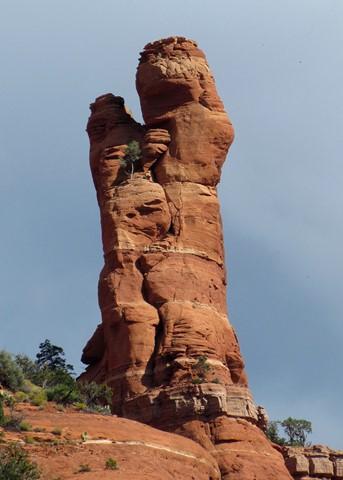 Ancient Wild Pillar