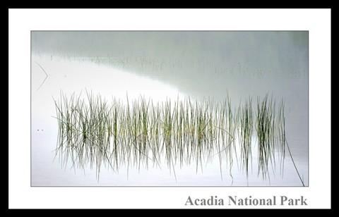 Acadia National Park - Bubble Pond