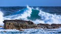 I saw sea lions on the rock enjoy ocean waves at the Cape of Good Hope, SA