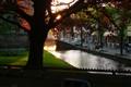 Somewhere in Netherland