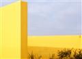 Yellow_Walls