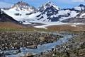 Glacier and King Penguins So Georgia Island