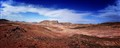 Desert Panorma