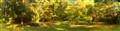 gimp2-100_3994-panoramic