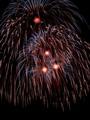 Fireworks 2010 Blaine,MN_7