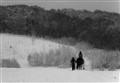 Snowy ride
