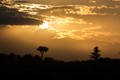 Sunset at Masai Mara