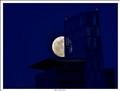moon behind glass