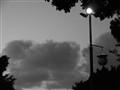 Gray evening