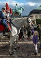 Horse Guard Copenhagen