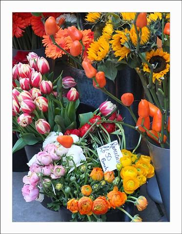flowers X10