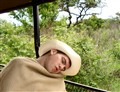 asleep on safari