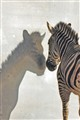 sized_zebra spiegelbeeld