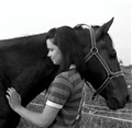 Love between a horse and a girl