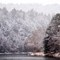 Clarion River Snowstorm (D300): Snowstorm over the Clarion River in Cook Forest State Park, Pennsylvania