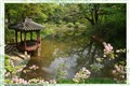 Secret Garden of Changdeokgung Palace. Seoul. South Korea