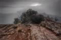 Mesa morning fog