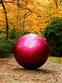 Red Ball in fall