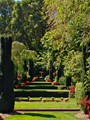 The Green Gardens of Filoli