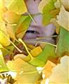 Autumn Mischief