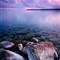 purpledawn