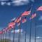VA Flags challenge IMG_1554