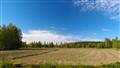 Finnish Spring