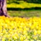 jaykell_2013-04-05