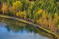 Inner Mongolia Autumn