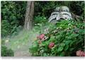 Giardino Botanico Fondazione André Heller