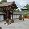 Tōfuku-ji Rock Garden