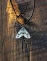 Moth & Wood