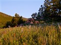 Meadow at Caribou Ranch, CO