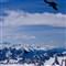 Alpine Chough, 2800 m/9284 feet