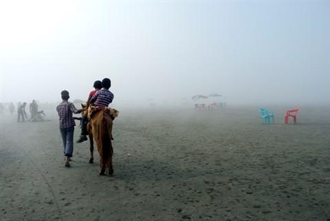 P1050730 foggy