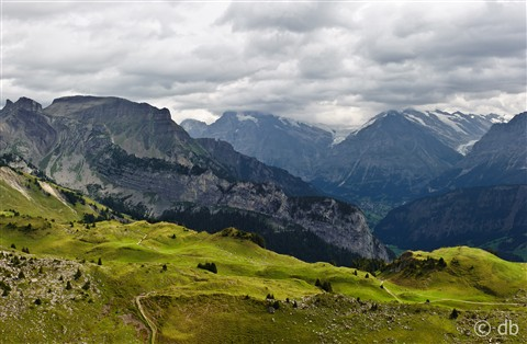 Switzerland - Schynige Platte-2