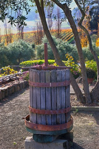 Wine  Press at Viansa