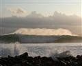 Galapagos Wave