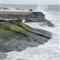 laguna_rocks-DSC02398-35p