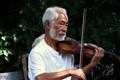 Zoo Violinist