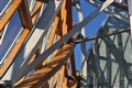 Art Gallery of Ontario, Toronto, Frank Gehry, 2008