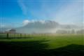 Fog on the Farm