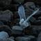 Gulls after lobster scraps-2