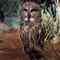 atw dsc19357RQC oWL jURONG