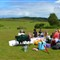 New Forest Picnic