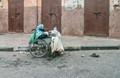 Morocco street lady -