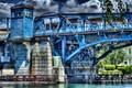 Fremont Bridge 13