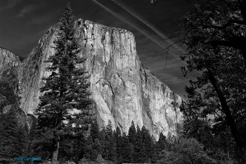 Yosemite-1101
