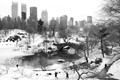 L1870222....the CENTRAL PARK-NYC....