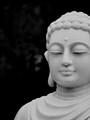 Buddha in the Stone